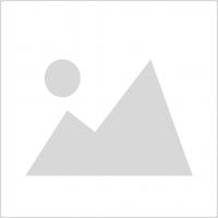 Μπλοκ Τουαλέτας BREF WC Power Active Μέντα & Ευκάλυπτος 50gr (-0,40€)